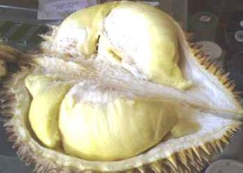 Durian is an expensive and exotic fruit from Asia - one-of-a-kind fruit in Southeast Asia. It reeks.