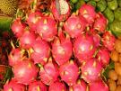 fdddddd - dragon fruit