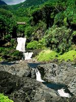 Maui's Road To Hana - Maui Hawaii Hana highway