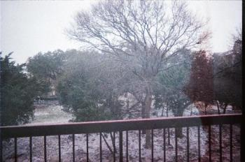 Snow in Texas - Here's a pic I took at Christmas 2006. It's one of the few times I've see it snow in central Texas. This was in Cedar Park which is very near Austin.