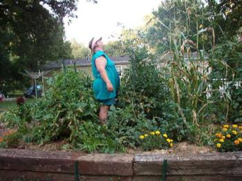 "Garden Jungle - At 5'7"", my corn towers over me as well as my cherry tomatoes. lol"