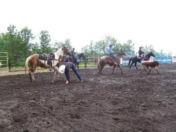 Rodeo at St. Claude, MB, Canada - Photo of Rodeo event in St. Claude, MB. The livestock is well cared for..as the presenters point out without proper care of their animals...there would not be a rodeo. It was a rainy day...and the show went on.