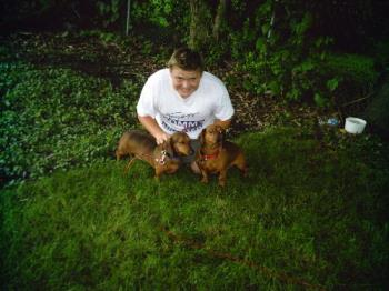 my kids - These are my boys, Travis, Oscar and Hans. I know I am crazy, but I love my dogs, too!