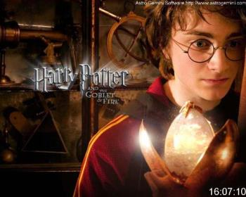 Harry Potter - The seven-part Harry Potter series of fantasy novels was written by English author J. K. Rowling about an adolescent boy wizard named Harry Potter and his best friends Ron Weasley and Hermione Granger. The story is mostly set at Hogwarts School of Witchcraft and Wizardry, a school for young wizards and witches, and focuses on Harry Potter's fight against the evil wizard Lord Voldemort, who killed Harry's parents as part of his plan to take over the wizarding world.
