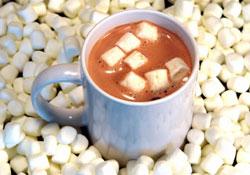 Hot Chocolate! - A mug of hot chocolate with marshmallows!