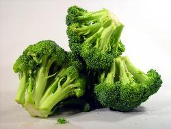 broccoli - broccoli