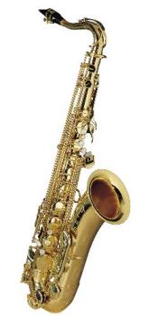tenor saxophone - An elegant tenor saxophone is the easiest to play among the saxes.