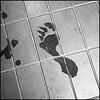shower - wet footprints on the bathroom floor...