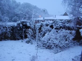 Snow - Snow from kitchen window.