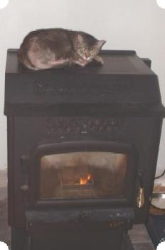 Tigger sleeping on the corn stove - Yes, the fire is on, and the cat is resting there. Silly thing. It's not hot up there, but warm enough to make her feel at home. :)
