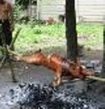 Roasted Pig or Lechon - The way they roast pig in the province.
