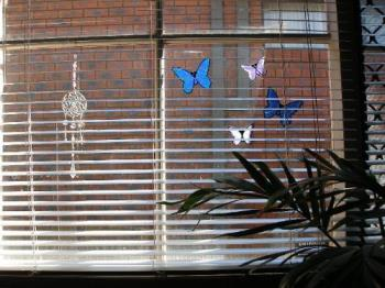 Butterfly decals - butterfly decals on my bedroom window
