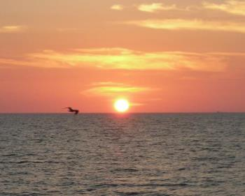 Clearwater Beach Sunset - This is a picture of a sunset I took while my husband and I were on our honeymoon in Clearwater Beach, Florida.
