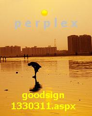 PERPLEXconfuse - Perplex because of xenophobia is one of the reason. [http://www.mylot.com/w/discussions/1330311.aspx
