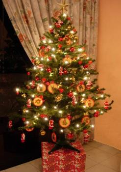 My Christmas Tree - The Christmas tree I put up in my home last year.