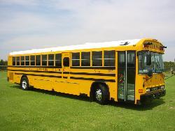 bus - bus
