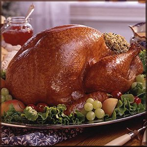 Turkey - Feel the taste of this turkey just by looking at it.