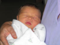 Katie at one day old - This is a photo of my granddaughter Katrina atone day old