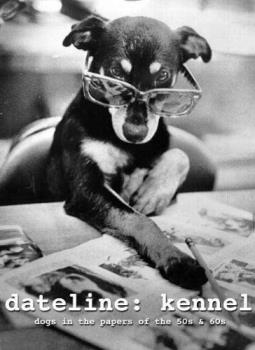 Dog with glasses reading the newspaper  - dog with glasses reading the newspaper