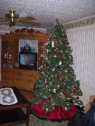 tree - Last years Christmas tree