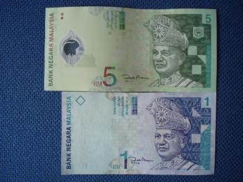 Money of my country - The smaller note is RM1 which is blue in color. The image attached shows the RM1 note and the RM5 note (green in color).