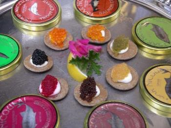 Caviar - Seven different types of caviar (source: wikipedia)