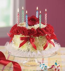 cake,  - cake