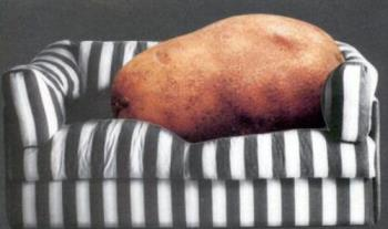 Couch potato. - Look at what the TV has done to a man.