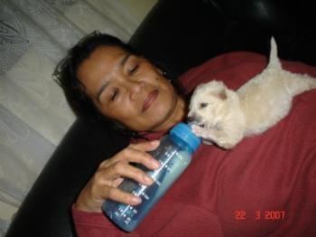 A friend in deed. - Wow! Cute puppy isn't it?