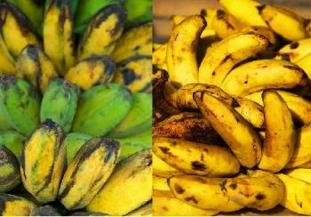 Saba and Tondan - These are Filipinos most favorite type of bananas, Saba and Tondan respectively.