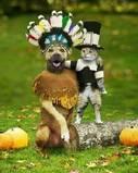 Thanksgiving - My avatar during Thanksgiving holidays