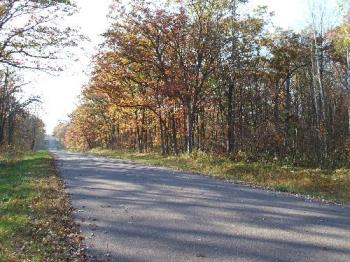 Beautiful fall scenery - Picture from Wisconsin last fall.