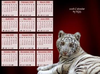 Calendar Wallpaper - White tiger cub wallpaper that I created