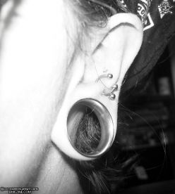 Ear Gauge - This is one of the least awful pictures I could find of a gauged ear.