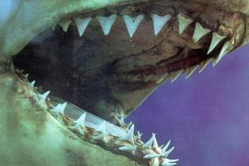 Jaws - Jaws..