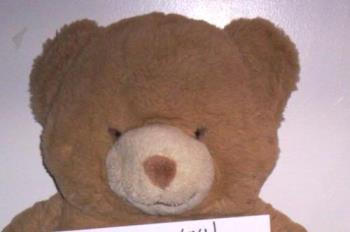my teddy - teddy