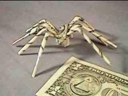 Money - Here is currency note folded as spider