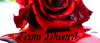 team edward - team edward, twilight, stephanie meyer, edward cullen, vampire