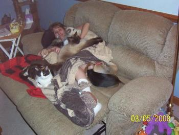 Me and seven fur babies - I woke up with them all around me