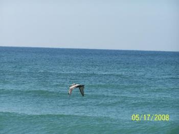 Pensacola Fl - From our trip this spring.