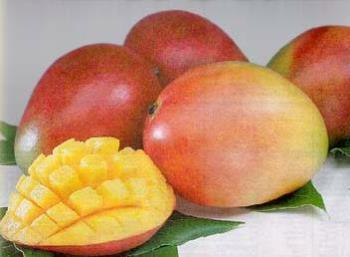 mangos - the only fruit i'm sensitive to.