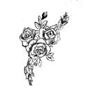 Roses to you - jpg image