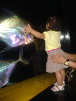 Big hug for the fish - My daughter