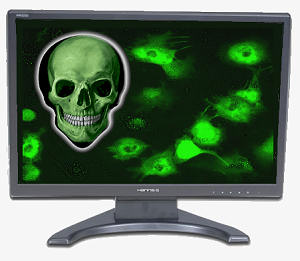 A Single Computer Virus May Spell Death To Your Co - Be aware, be careful, protect your gadget!