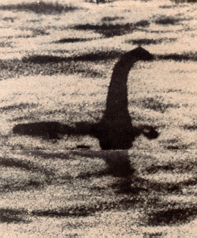nessie - have you ever seen nessie?