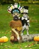 My Thanksgiving Avatar - It has both the Indian and Pilgrim which is perfect!