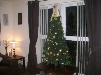 My gold christmas tree in the other small room - This is my other gold tree. Needs some more baubles for it. Will look better when I wrap some presents for underneath it.