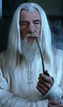 Gandulf - Gandulf, the good, grey, wizard in Lord of the rings who was resurrected as a white wizard.