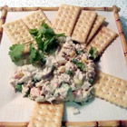 spicy tuna salad,nham,nham! - this recipe is delicious and vey easy to prepare!