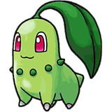 chicorita - cute chicorita pokemon character